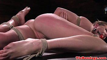 lion shani xxx veado Painful urethra punishment